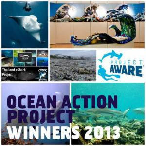 Ocean Action Project winners